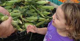 Children at the Market :: Fun for all ages